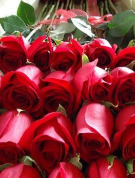 Caja de Lujo con Rosas de exportación para Mamá